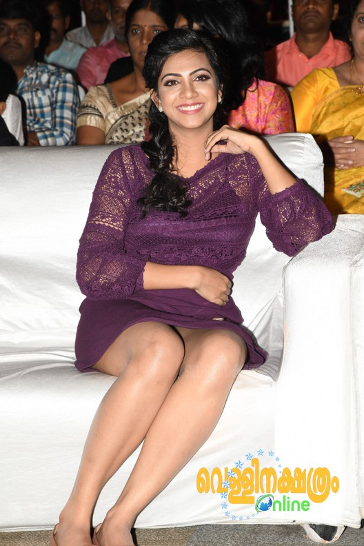 Premam Telugu Audio Launch